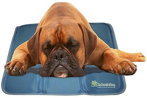 Green Pet Shop Cooling Medium product image