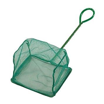Ebi Epuisette en Forme de U pour Aquariophilie Vert 25 cm 215-102619
