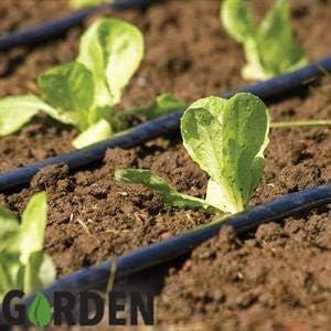 ONLINE DEALS OUTLET - Arbusto de riego para jardín (Sistema de riego, microarbusto, riego de jardín, para Paisaje, Cama de Flores, Plantas de Patio): Amazon.es: Jardín