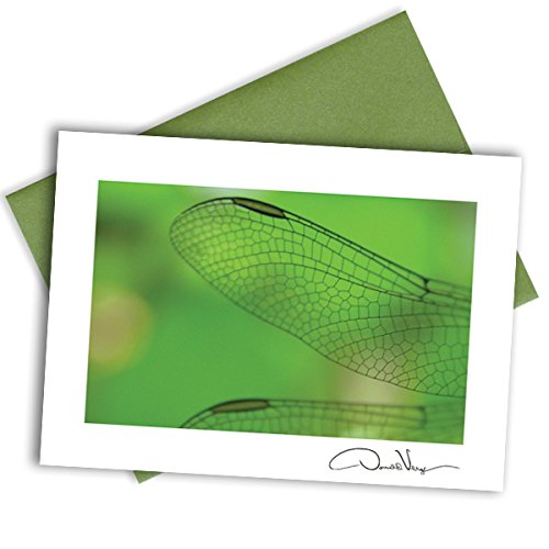 One Dragonfly Note Card. Elegant Envelope. Unique Birthday & Christmas - Dragonfly Enclosure