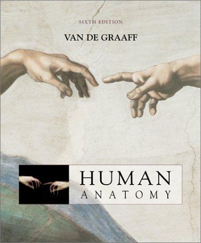 Graf Van (Human Anatomy)