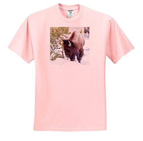 Danita Delimont - Bison - Buffalo In Snow. Yellowstone National Park. Wyoming. - T-Shirts - Adult Light-Pink-T-Shirt Small (TS_279854_34)