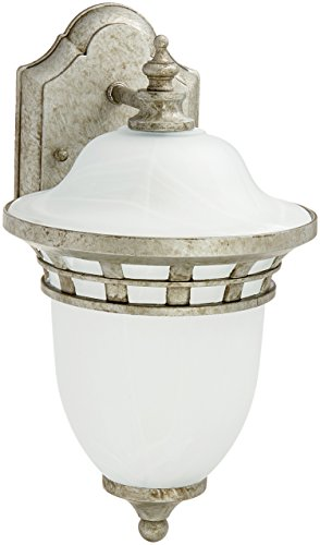 (Trans Globe Lighting 5110 AP Outdoor Stephano 12