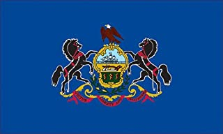 product image for Valley Forge, Pennsylvania State Flag, Nylon, 3' x 5', 100% Made in USA, Canvas Header, Heavy-Duty Brass Grommets