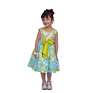 Kilkari Baby Girls' Knee Length Dress