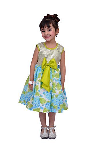 Kilkari Baby Girls' Knee Length Dress