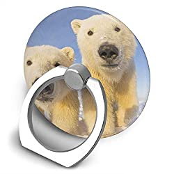Dorothy Polar Bear Cell Phone Ring Holder Universal Smartphone Ring Grip Stand Car Mount 360 Rotation for iPhone, IPad, Samsung, HTC, Google Pixel, Nokia, LG