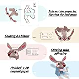 Origami Paper, Origami Paper Kit, 10 Sheet 22X10