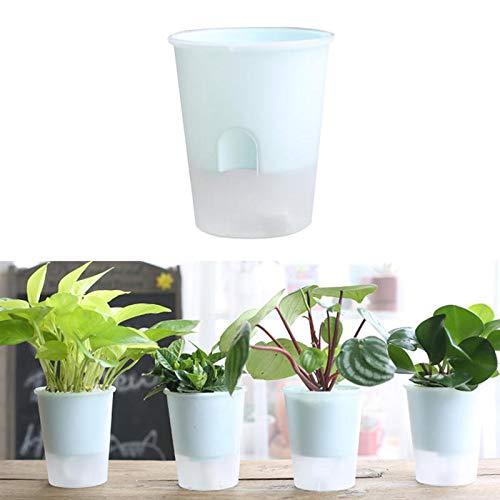 Oyfel Vaso di fiore vaso plastica trasparente assorbimento automatico d' acqua per Succulente Cactus balcone giardino 1 pcs