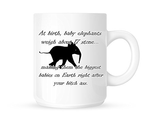At Birth, Baby Elephants Weigh About 17 Stone. Funny Factual Insulting Novelty Funny Novelty Coffee Mug Cup Perfect Christmas Gift Idea