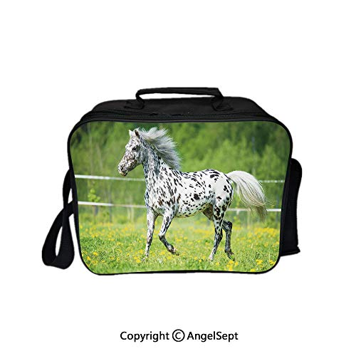 Travel Picnic Lunch Box Wide Open Lunch,Appaloosa Horse Runs Trot on The Meadow in Summer Time Farmhouse Rural Decorative Green Black White 8.3inch,Lunch Bags For Unisex Adults