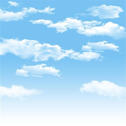 AOFOTO 10x10ft Blue Sky Backdrops White Clouds Photography Background Photo Studio Props Baby Infant Kid Newborn Toddler Girl Boy Adult Artistic Portrait Spring Party Decoration Summer Vinyl Wallpaper ()