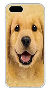 Golden Retriever Puppy Polycarbonate Hard Case Cover for iPhone 5/5S White