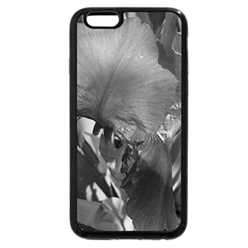 iPhone 6S Case, iPhone 6 Case (Black & White) - hd violet flower