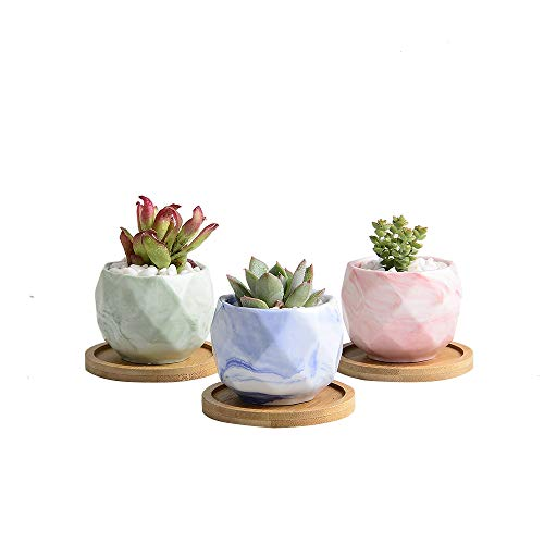 3 Mini Pot - 2.5 Inch Marble Design Small Succulent Planter Set with Removable Drainage Bamboo Tray Mini Plant Pots for Succulents Plants, Perfect Gift Idea Set of 3