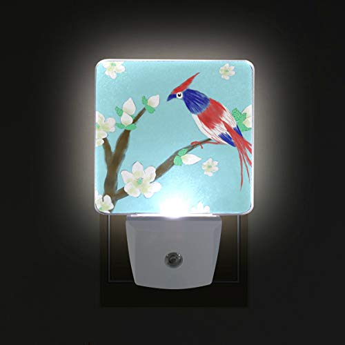 Mr.XZY Cute Parrot Flower Watercolor Painting LED Night Light Lovely Animal Fresh Style for Kids Set of 2 Night Lamp for Bedroom, Living Room, Hallway, Holiday Party Decoration 2010505 - Parrot Party Bluetooth