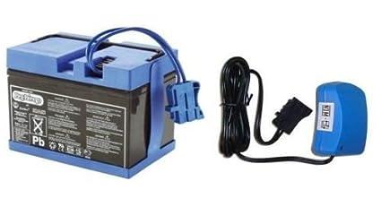 Amazon.com: Peg Perego 12 Volt azul batería y cargador Combo ...