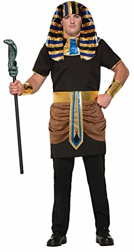 Egyptian Couples Costumes (Forum Men's Pharaoh Costume, Multi, One Size)