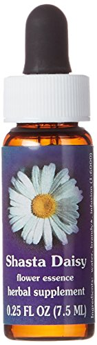 Flower Essence Services Fes Quintessentials Dropper, Shasta Daisy Supplement, 0.25 (0.25 Ounce Flower Essence)