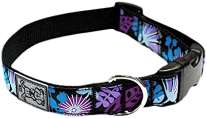 RC Pet Products 1-Inch by 12-20-Inch Adjustable Dog Clip Collar, Calypso, Medium