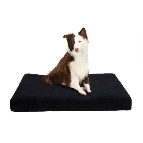 JLA Pets Soft Touch Black MicroBerber Orthopedic Napper, 29 by 39-Inch, My Pet Supplies