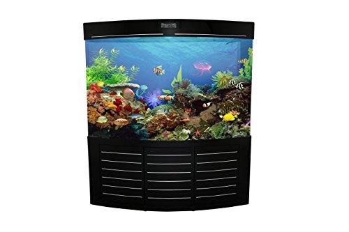 fish tank 150 gallon - 5
