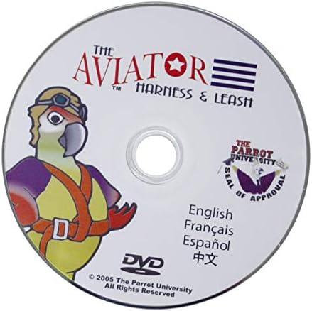 The AVIATOR El Arnés de Aves: Pequeña Negro: Amazon.es: Productos ...