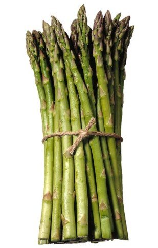 25 2nd Year Mary Washington Variety Asparagus Roots/Plants