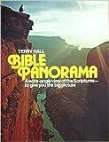 img - for Bible panorama book / textbook / text book