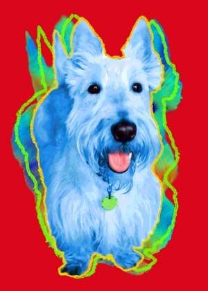 White Scottish Terrier Art Print on Canvas