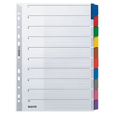 Formato A4 Rinforzo in mylar Esselte Intercalare Cartoncino Multicolore,100169