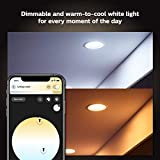 Philips Hue White Ambiance LED Smart Retrofit
