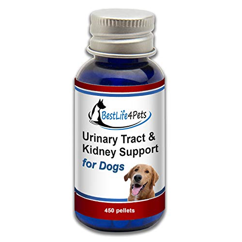 BestLife4Pets Urinary Tract and Kidney Support for Dogs; Natural Pet UTI Treatment Relieves Painful Urine Incontinence and Leaks, Reduces Bladder Infections, Prevents Kidney Disease and Stones