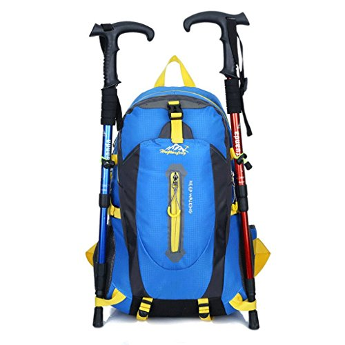 (Guofeng Outdoor Mountaineering Bag Backpack Men And Women Hiking Outdoor Multi-function Outdoor Travel Bag 40L Waterproof And Tear Resistant Backpack (Color : Blue))
