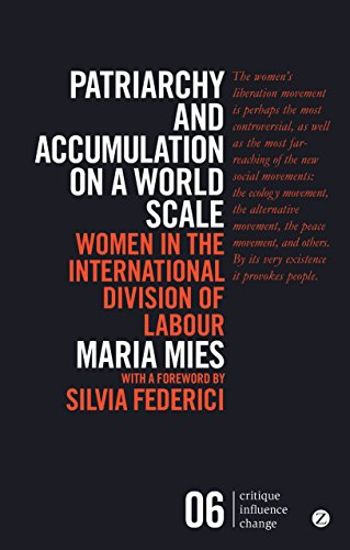 Patriarchy and Accumulation on a World Scale: Women in the International Division of Labour (Critique Influence Change)