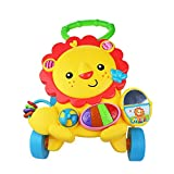 Multifunctional Toy Baby Toy Little Lion Walker Baby Trolley Walker Prevent Rollover 0-12 Months