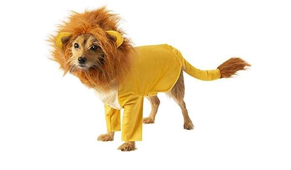 RubieS Disney: Disfraz de Rey León para Mascotas, Simba, XL ...