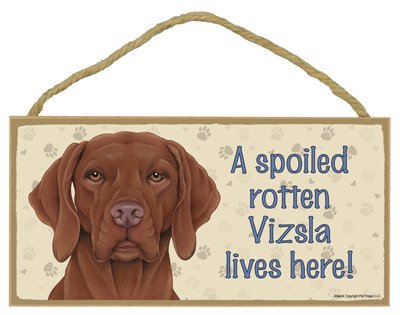 SJT ENTERPRISES, INC. A Spoiled Rotten Vizsla Lives here Wood Sign Plaque 5