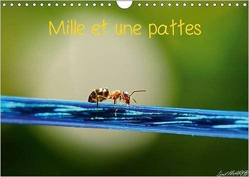 Téléchargez des manuels gratuitement en pdf Mille et une pattes : Photographie d'insectes. Calendrier mural A4 horizontal 2016 1325109169 PDF ePub MOBI