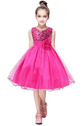 YMING Flower Tutu Dress for Girls Sequin Party Dress Shiny Ball Prom Dress Rose 3-4 Years