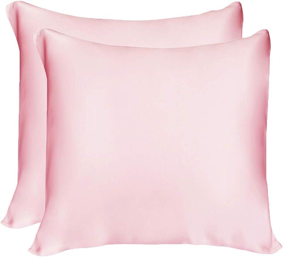 LULUSILK - Funda de almohada de seda natural de 16 mm, para cuidar tu piel y anticaída del cabello con cremallera invisible, seda, rosa, 65 x 65 cm - 2 pièces