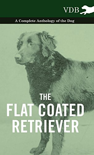 New Flat Coated Retriever - The Flat Coated Retriever - A Complete Anthology of the Dog