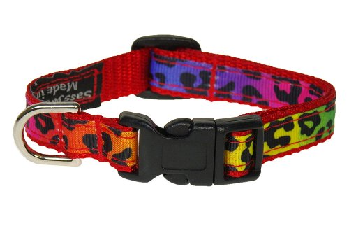"Xsmall Rainbow Leopard Dog Collar: 1/2"" wide, Adjusts 6-12"" - Made in USA."