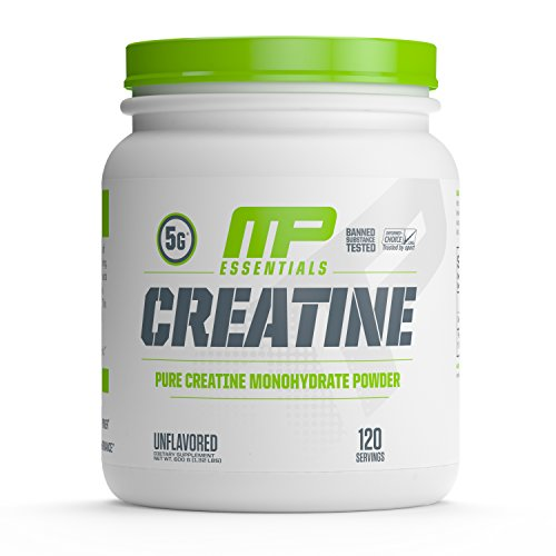 Creatine for MMA Fighters