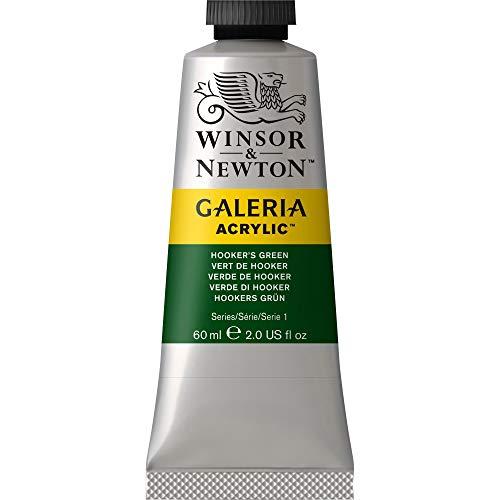 (Winsor & Newton Galeria Acrylic Paint, 60ml Tube, Hookers Green )