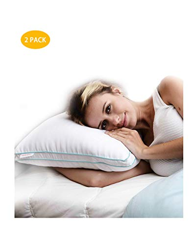 Homelike Moment Goose Feather Down Pillows for Sleeping 2 Pack Bed Pillow King Size Pillows Set of 2 Hypoallergenic Gusseted