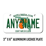 TEAMLOGO Personalized Florida License Plate - Sizes
