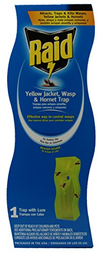 raid-wasp-and-yellow-jacket-swing-trap