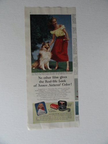 Color Ansco Film (Ansco color Film, 50's Print Ad. color Illustration, print ad (woman playing with dog) Original Vintage 1952 Collier's Magazine Print art ***store link [www.amazon.com/shops/ads-thru-time])