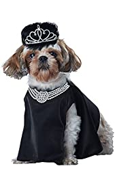 California Costume Collections Pup-A-Razzi Barkfest At Sniffany\'s Dog Costume, Black, Medium